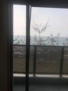 夏井ヶ浜 窓